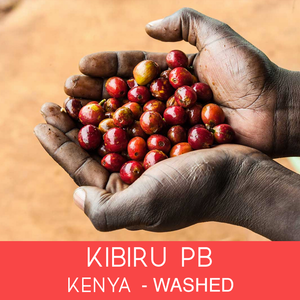 Kenya - Kibiru PB - Washed