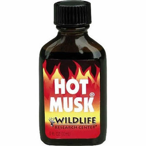 Wildlife Research 300 Hot Musk Buck Deer Scent Non-Urine Base 1 Oz Bottle