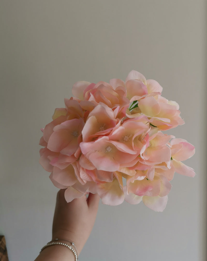Single Stem Coral Hydrangea - TBI