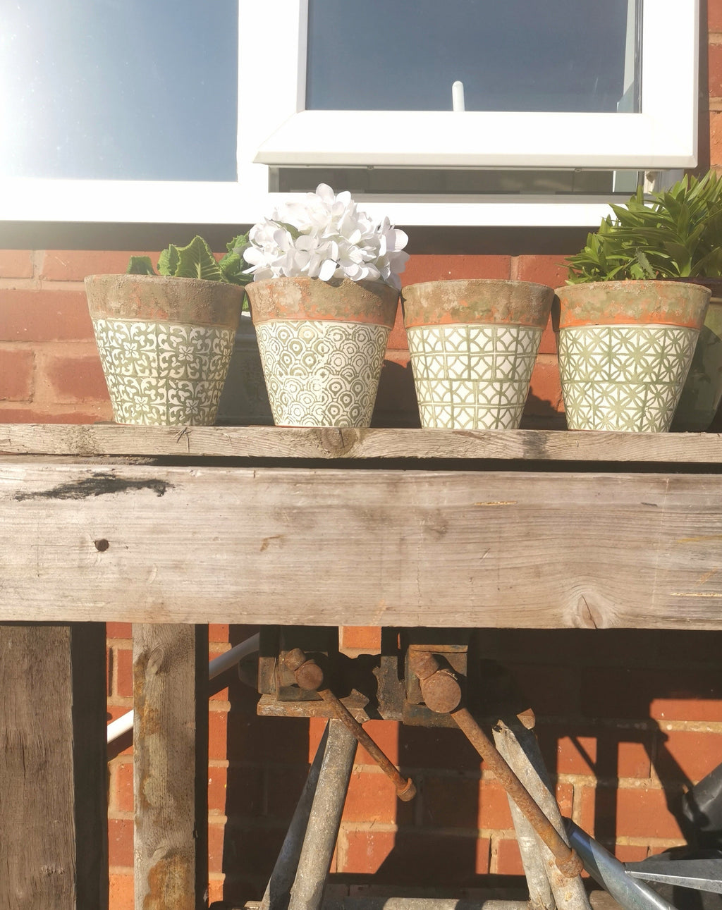 Assorted Patterned Plant Pots - TBI