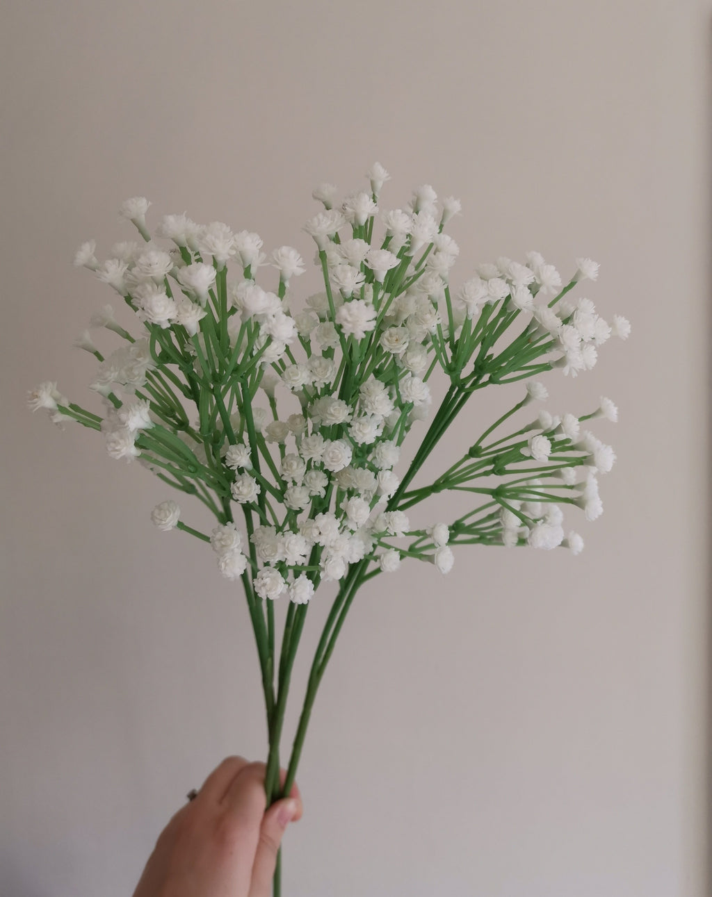 Gypsophilia Spray Filler- TBI