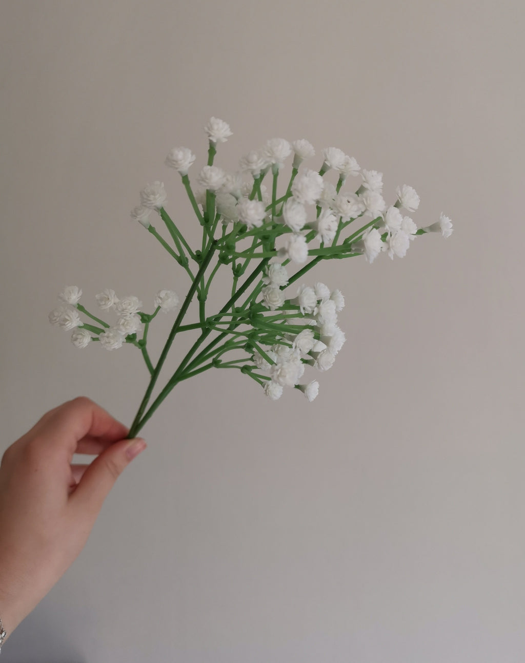 White Gypsophilia Spray - TBI