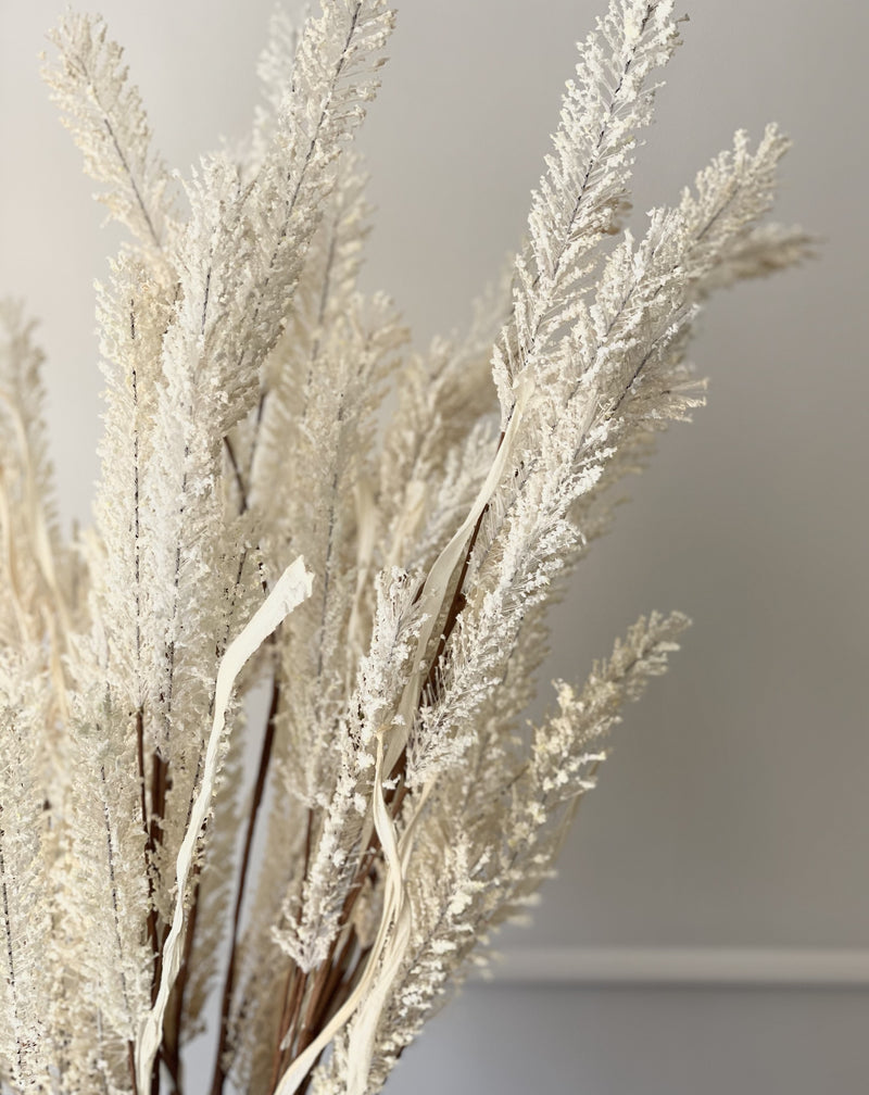Cream Dried Wild Flower - TBI