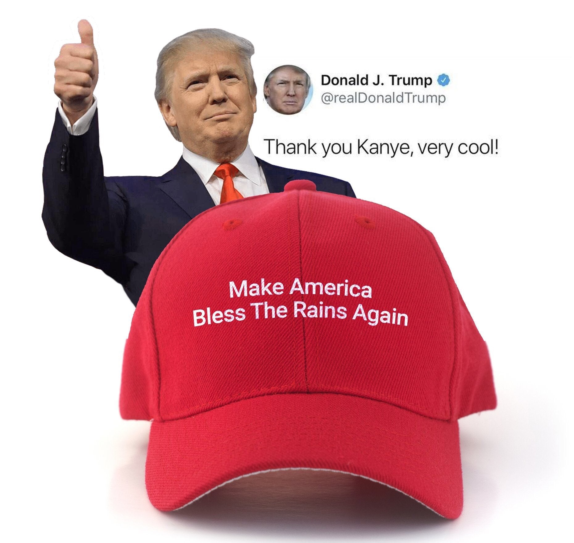 Make America Bless The Rains Again Premium Hat