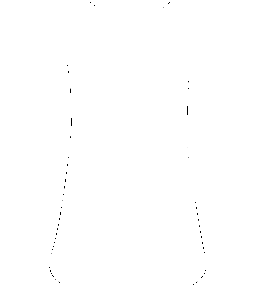 Vegan // Damen Racerback Tank Top