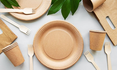 The Advantages of Disposable Dinnerware
