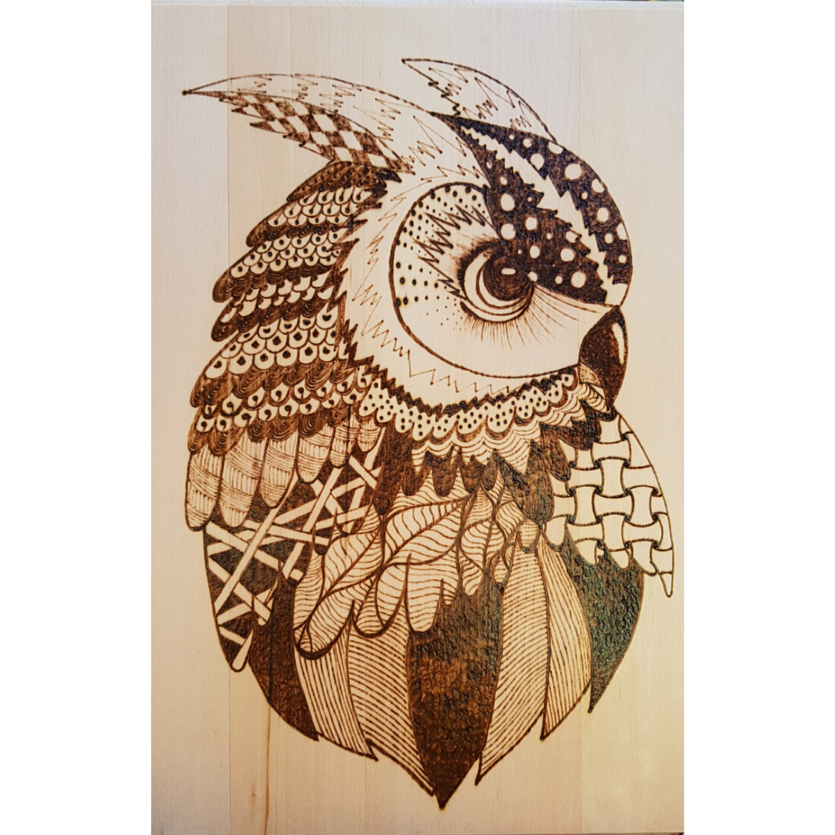 Wood Panel - Owl by Viera Art - pyrography- zentangle - home decor