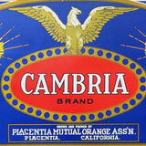 CAMBRIA  Fruit Crate Box Label 1940s
