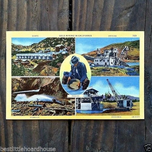 CALIFORNIA GOLD MINER Linen Postcard 1930s