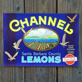 CHANNEL LEMON Citrus Crate Box Label