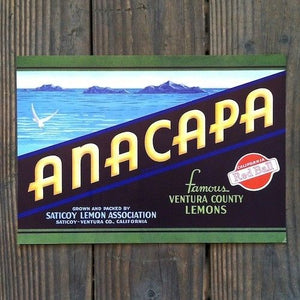 Original ANACAPA LEMON CITRUS CRATE Label Saticoy Ventura Co California NOS