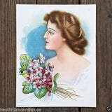 VIOLET FLOWER Victorian Lithograph Print 1909