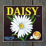 DAISY SUNKIST Fruit Crate Box Label 1950s