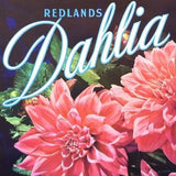 DAHLIA REDLANDS SUNKIST Citrus Crate Box Label 1940s
