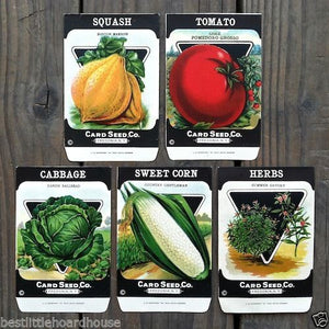VEGETABLE SEED PACKS Set C Garden Collection 1920's