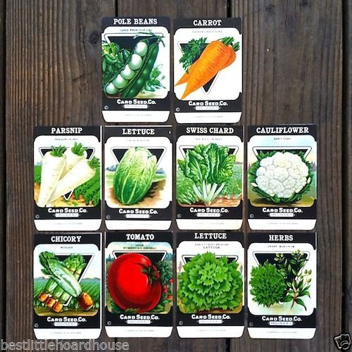 VEGETABLE SEED PACKS Set D Garden Collection 1920's