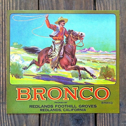 BRONCO Crate Fruit Box Label 1920s