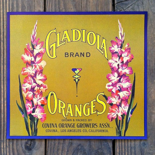 GLADIOLA ORANGES Citrus Crate Box Label