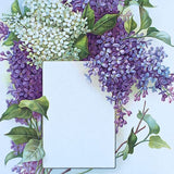 PURPLE LILAC Presentation Panel Lithograph Print 1910