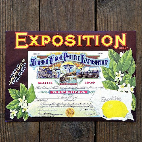 EXPOSITION LEMON SUNKIST Citrus Crate Box Label 1940s