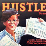HUSTLER BARTLETTS Pears Fruit Crate Label 1929