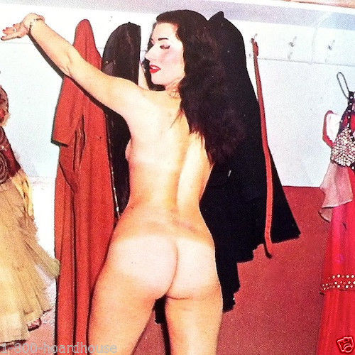10 Fanny Tastic 1950s BURLESQUE PINUP Nude Collectible Cards