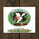 WHITE ORCHID Cigar Box Top Label 1910s