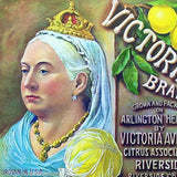 QUEEN VICTORIA LEMON Citrus Crate Fruit Label 1920s