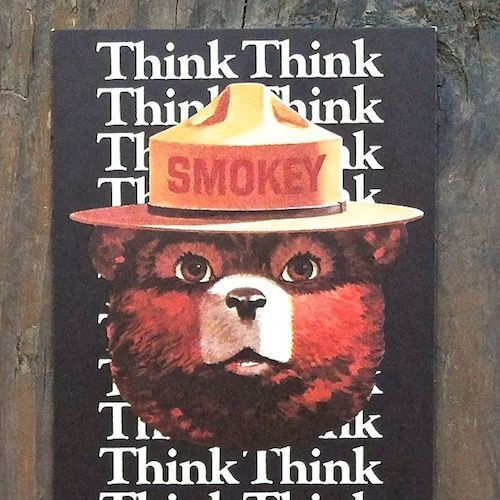 2 SMOKEY THE BEAR Think Bookmark 1982