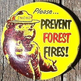 SMOKEY THE BEAR Prevent Forest Fires Pin 1960s
