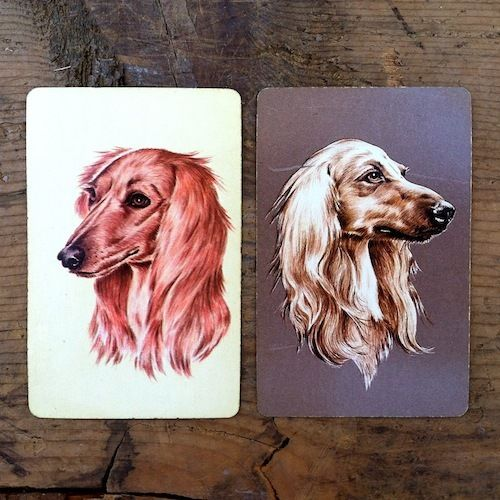 SALUKI DOGS Playing Cards 1940s