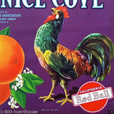 VENICE COVE Citrus Crate Box Fruit Label 1930s