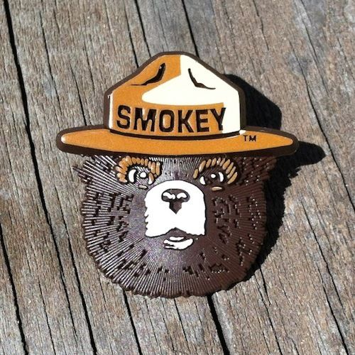 SMOKEY THE BEAR Ranger Hat Badge Pin 1990s