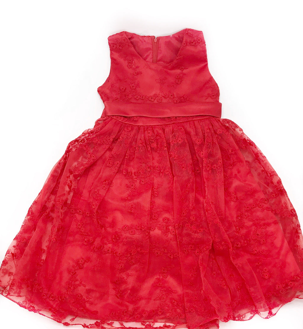 Zip up Embroidered Lace Ruffled Tulle Party Dress for Girls