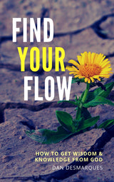 Find Your Flow - 22 Lions