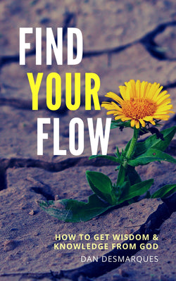 Find Your Flow (ebook) | 22 Lions