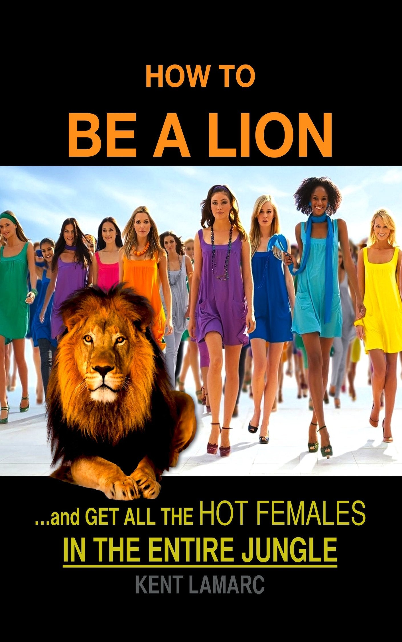 How to be a Lion (ebook) | 22 Lions