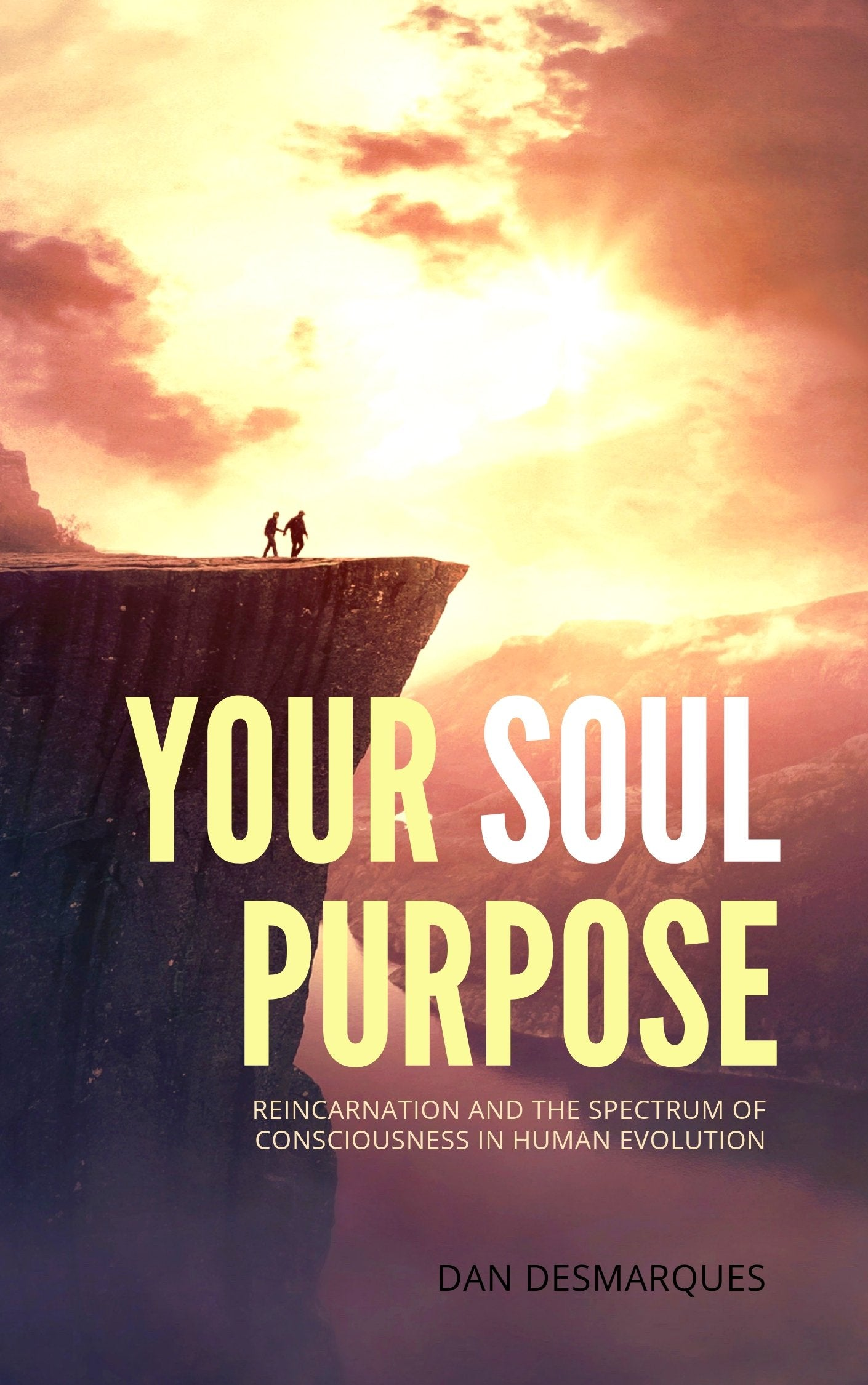 Your Soul Purpose (ebook) | 22 Lions