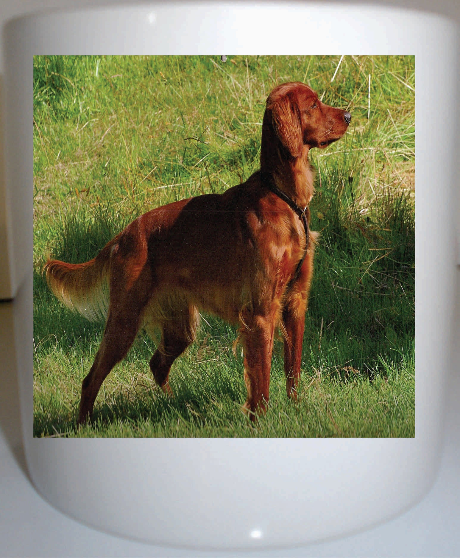 Irish Setter Coffee Mug 11 Oz Ceramic