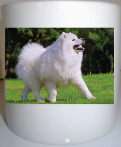 Samoyed 11 oz coffee mug