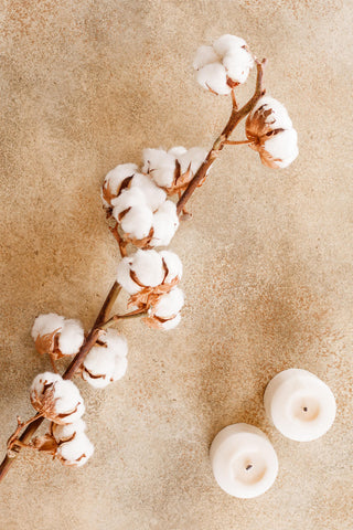 cotton flowers and two candles