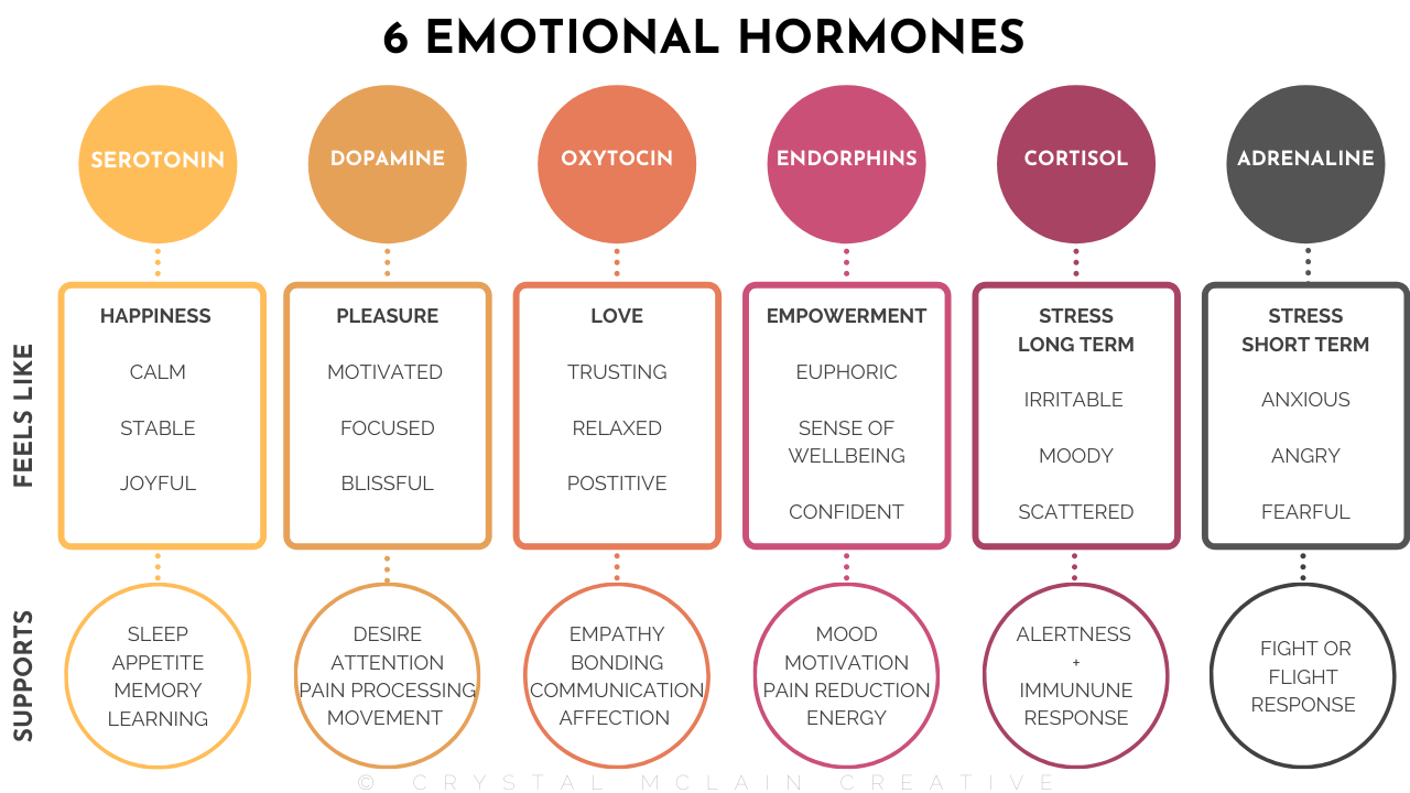 CRYSTAL MCLAIN CREATIVE 6 EMOTIONAL HORMONES CHART LIST