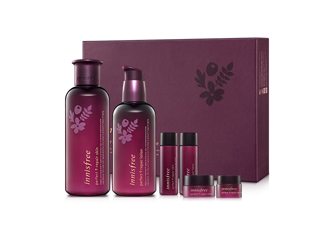 Innisfree Perfect 9 Repair Skin Care Set