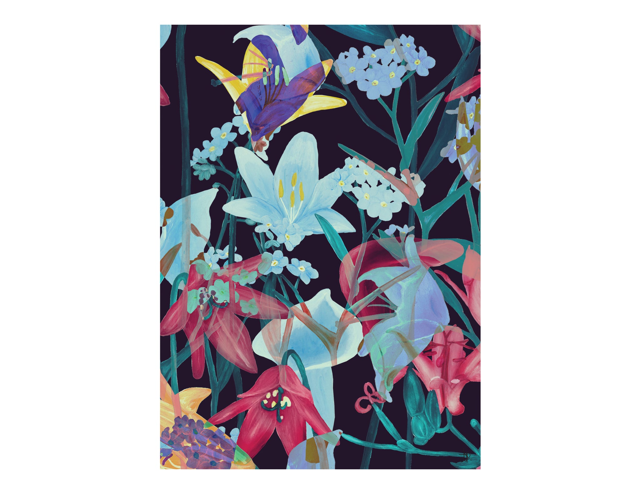 ARTISAN A3 WALL PRINT Tropical Sorbet - Lisa & Alex