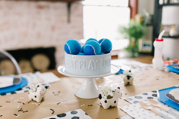 Puppy-Pawty-Themed-1st-Birthday-Party-ellie-and-piper-party-boutique-party-supplies-01