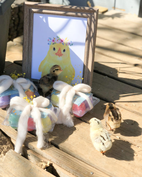 farmhouse-farm-animal-baby-chick-themed-party-welcome-home-ellie-and-piper-party-boutique-supplies-decorations-01