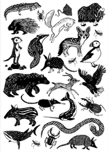 Petit Monkey Wild Animals Temporary Tattoos in Black