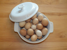 Chicken Eggs by the Dozen