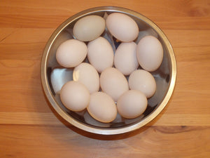 Duck Eggs by the Dozen
