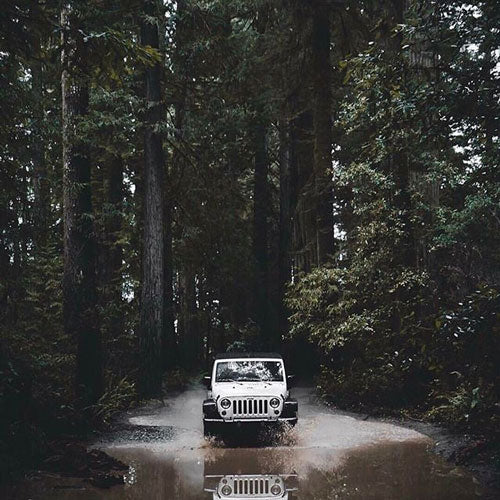 A Jeep driving in a forest for road trip